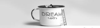 Il Sogno e la Missione della Vita. Smontare falsi miti per costruire vite vere attraverso i Desideri.