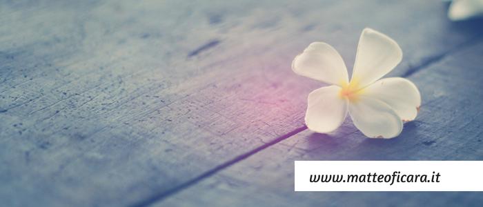 I 4 principi della Consapevolezza: Attenzione, Sentire, Stare nel Cuore e Vedere.